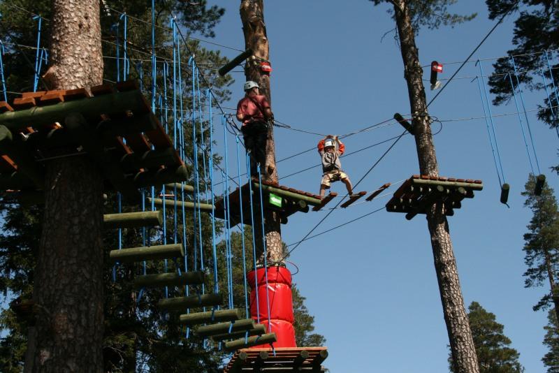 Przeszkody w naszym parku znajdują się na różnych wysokościach...